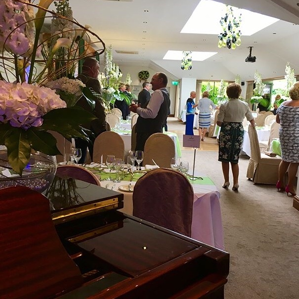 Wedding pianist for Gibbon Bridge