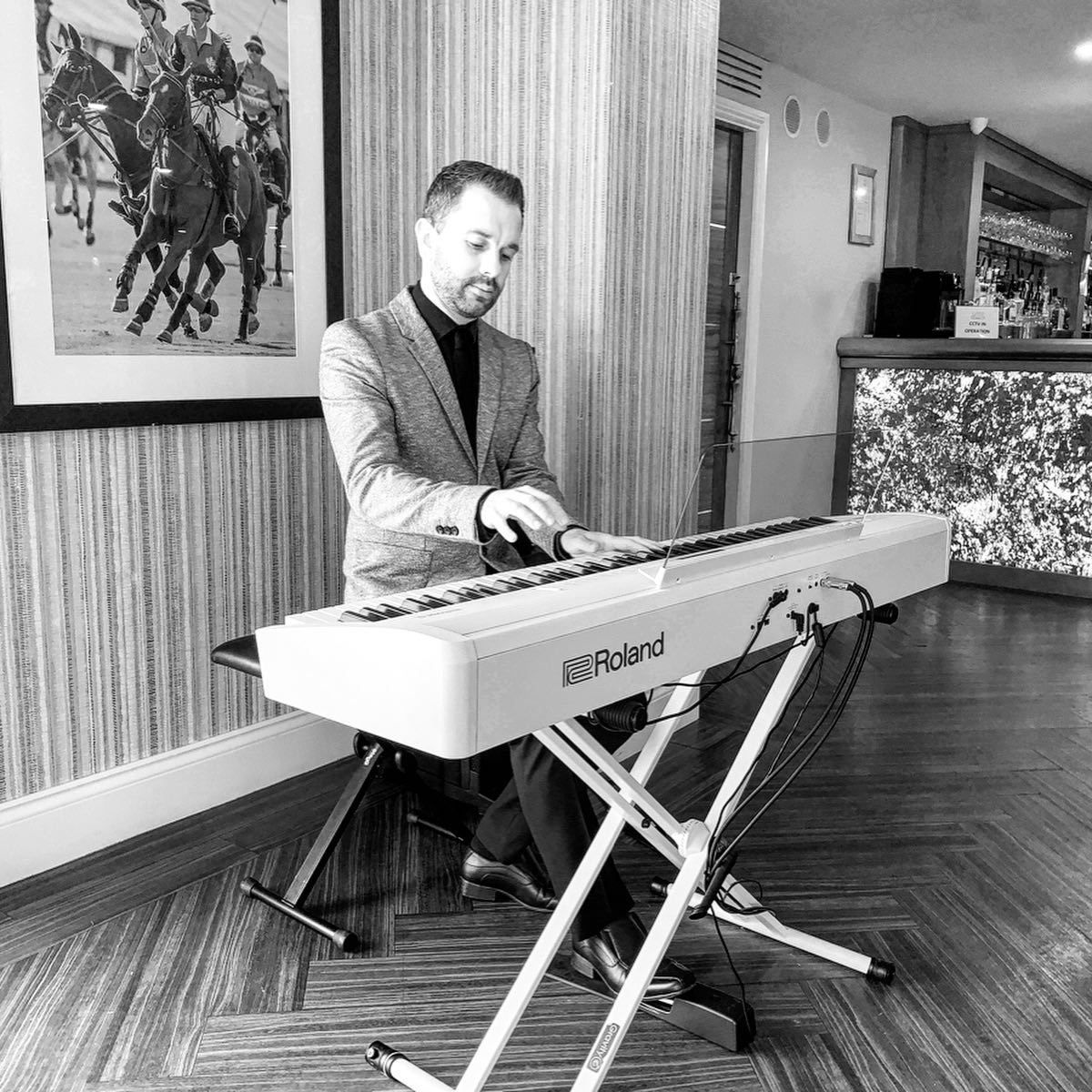 Drinks reception pianist for Merrydale Manor
